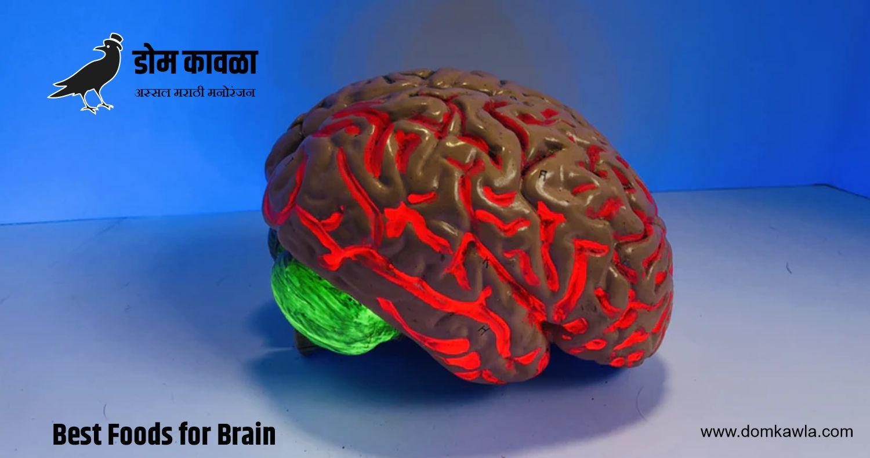 Best Foods for Brain बुद्धी तीक्ष्ण करणारा हा आहार घ्या