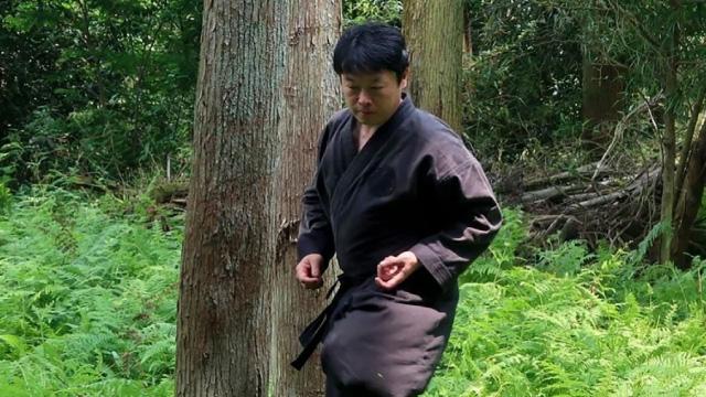 Japanese Ninja Degree