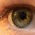 Left Eye Twitching