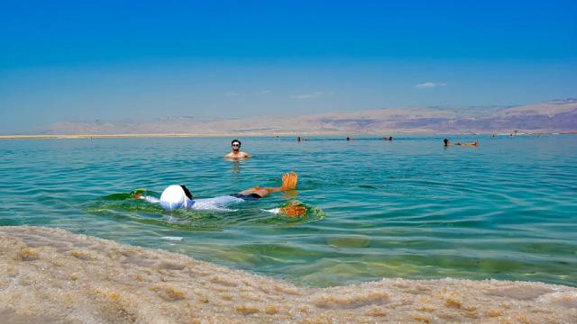 Dead sea located