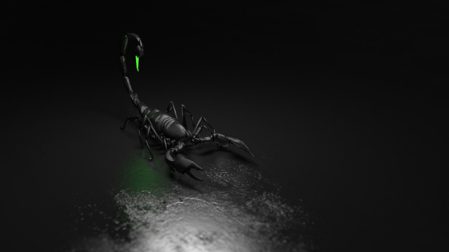 Scorpion poison