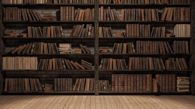 Underground Library Rajasthan